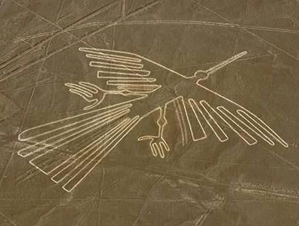 Nazca7